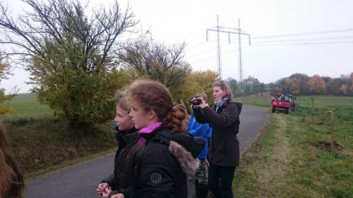 Jeřábové aleje na Lešensku
